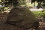 Kamień Bendera w Parku Południowym